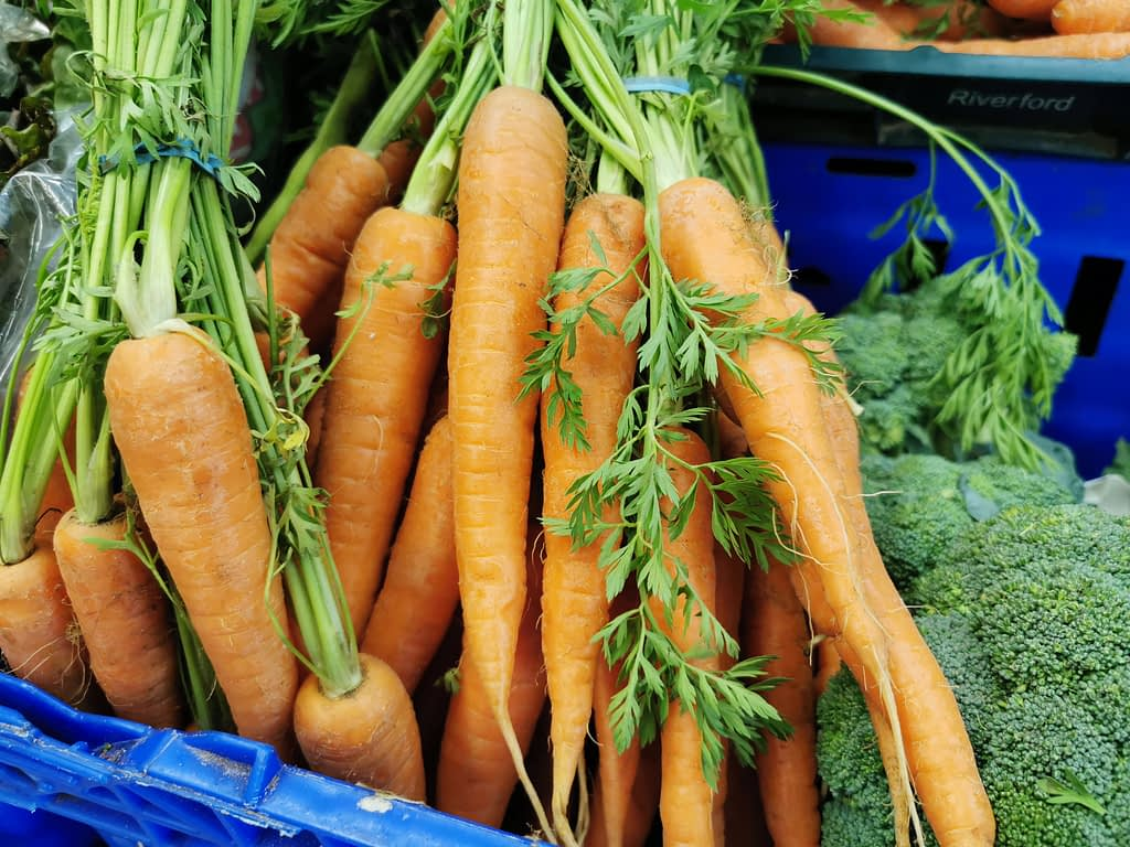 Freshly picked delicious organic carrots from Earthfare's local organic farming range